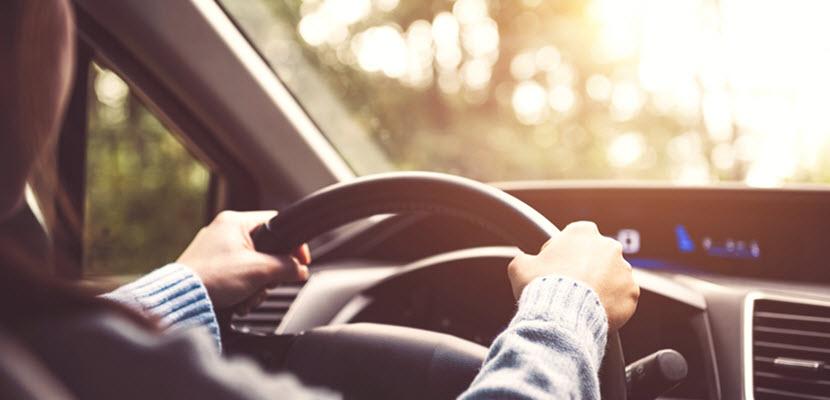 Car Speed Sensing Steering